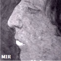 Mid-infrared image. A mid-infrared image detects the material response of the more superficial fresco layer.