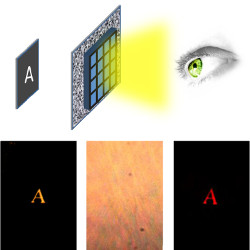Peeking through turbid media. The top of the figure shows a sketch of the experiment: thanks to an SLM, it is possible to reconstruct the image of an object (the letter A) illuminated with standard illumination and hidden behind a turbid medium. The three images in the bottom row respectively show the direct image of the object, the image after the turbid medium where no reconstruction technique is applied, and, finally, the reconstructed image using the SLM (left to right).